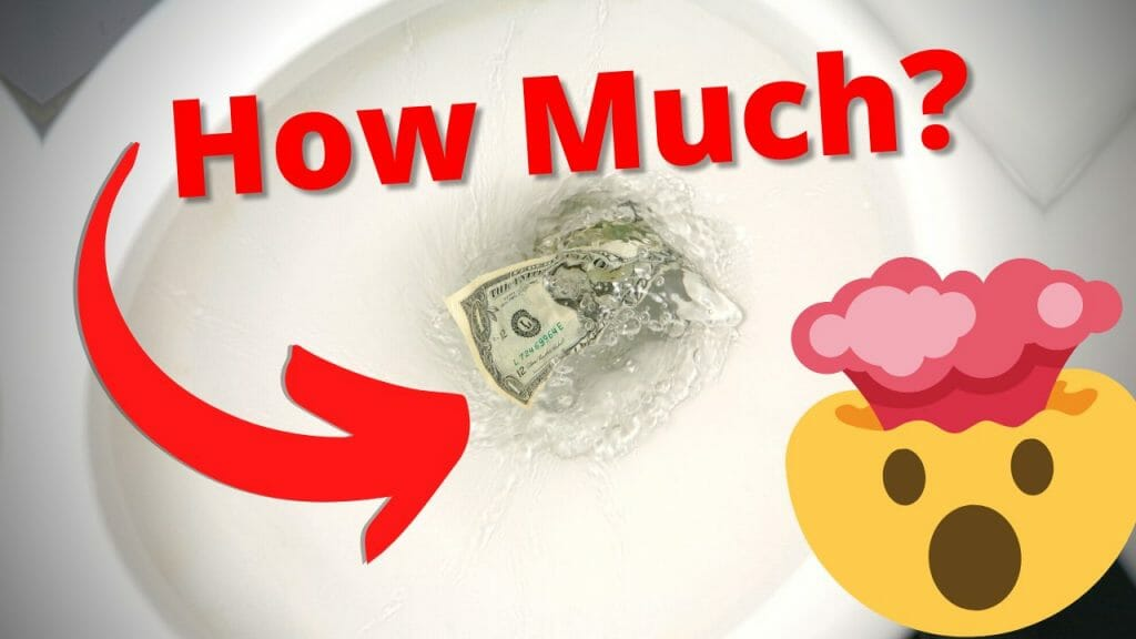 How much does flushing a toilet cost